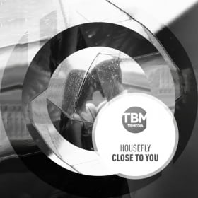HOUSEFLY - CLOSE TO YOU